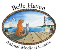 Belle Haven Animal Medical Centre Logo